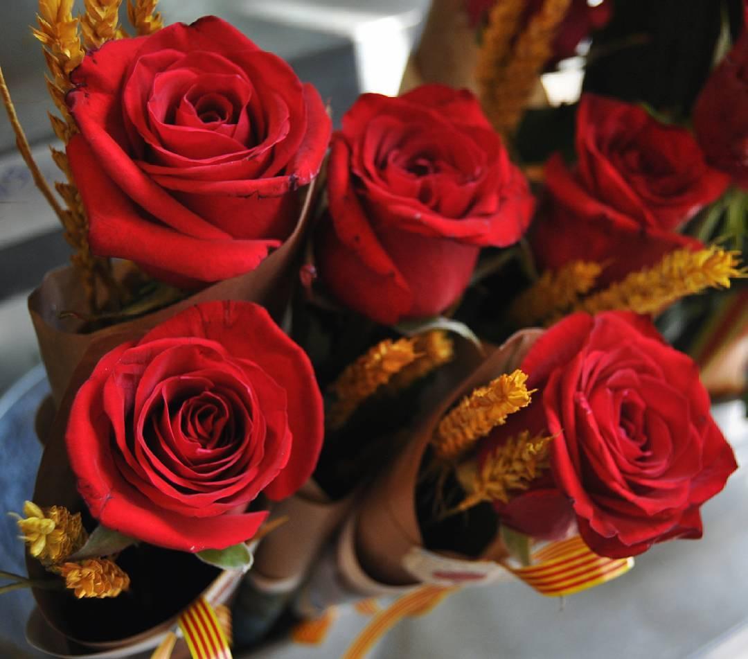 floristeria herbs barcelona 18095023 278478842604424 8195172027426930688 n - APRENDER A COMPRAR FLORES POR INTERNET Y A DOMICILIO