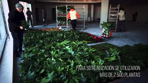 jardines verticales venta online 480x270 - JARDINES VERTICALES VENTA ONLINE