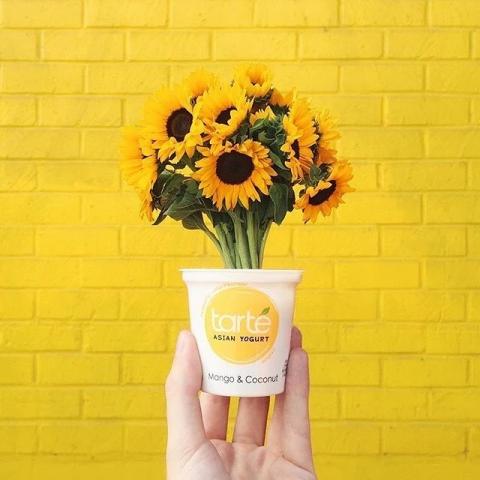 sun flower two 60219765 117031239518715 9212506944552040597 n 480x480 - ARREGLOS DE BODA: IDEAS PARA UNA DECORACION DE GIRASOLES