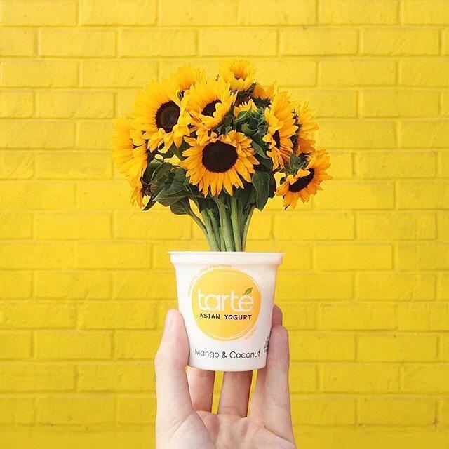 sun flower two 60219765 117031239518715 9212506944552040597 n - ARREGLOS DE BODA: IDEAS PARA UNA DECORACION DE GIRASOLES